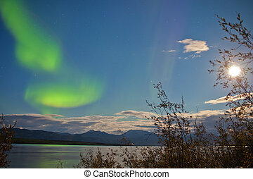 Aurora borealis full moon over Lake Laberge Yukon - Green...