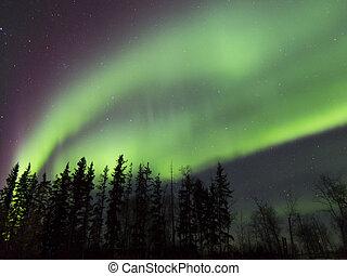 Aurora Borealis in Alberta, Canada