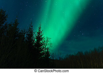 aurora borealis, (northern, lights)