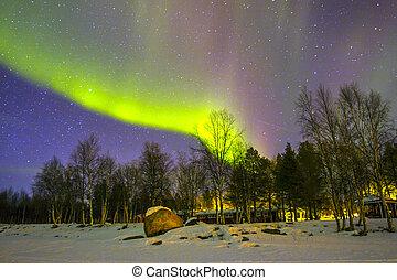 (aurora, noordelijk, op, snowscape., lichten, borealis)