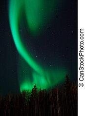 Aurora random shape
