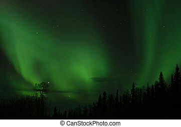 Aurora - The Northern Lights paint the sky north of...