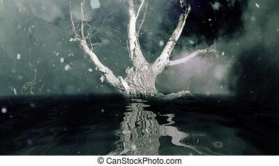 aus, schneien, einsam, baum, wasser, zurückwerfend