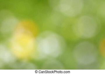 aus-von-fokus, wiese, farbe foto, abstrakt, -, hintergrund