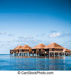aus, wasser, bungalows, mit, schritte, in, erstaunlich, grün, lagune