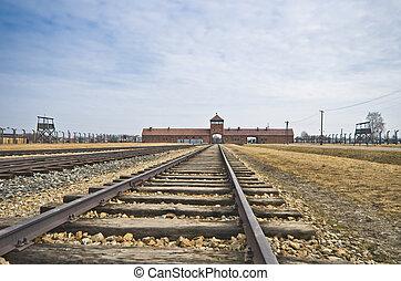 auschwitz, 营房, birkenau, 灭绝