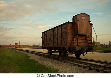Auschwitz-Birkenau Concentration Camp - Train wagon in...