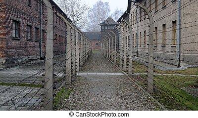 Auschwitz fencing - Fence with barbed wire in Auschwitz