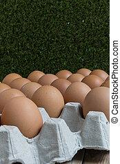 ausente, concepto, grupo, huevos, huevo,  :,  disappears