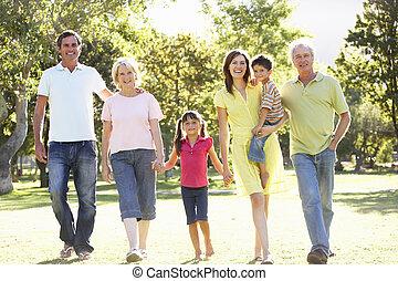 ausgedehnt, gruppenbild, von, familie, genießen, weg innen, park