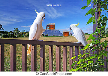 Cheers Mate!