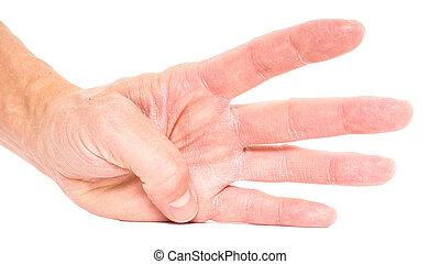 ausstellung, finger, freigestellt, vier, person, weißes
