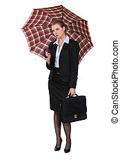 Austere businesswoman holding a briefcase and an umbrella