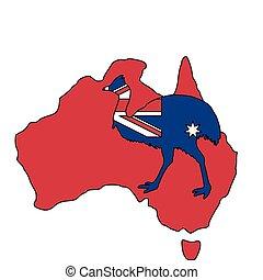 austrália, kassowary