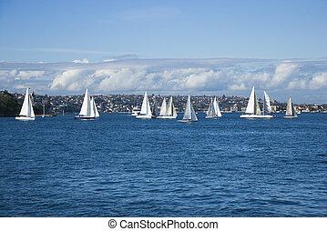 australia., シドニー, ヨット