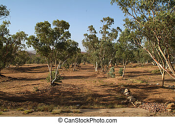 australia, alice springt