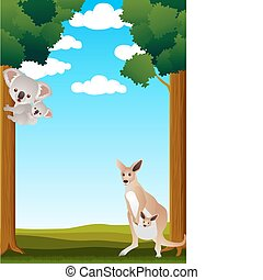 australia, animal