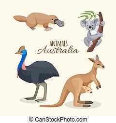 Australia animals collection of brown kangaroo, grey koala and duckbilled