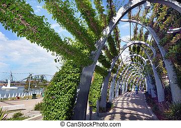 australia,  Brisbane,  -, süden, Parklandschaften,  bank
