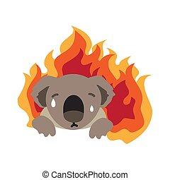 australia bushfire-05 - Australia bush fires vector ...