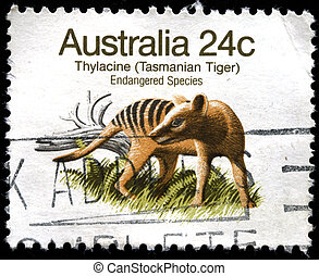 AUSTRALIA - CIRCA 1980s: A stamp printed in Australia shows...