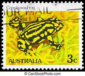 AUSTRALIA - CIRCA 1981 Corroboree Frog