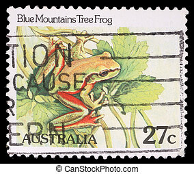 stamp printed by Australia, shows Blue Mountains tree frog