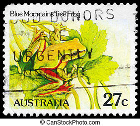 AUSTRALIA - CIRCA 1981 Tree Frog