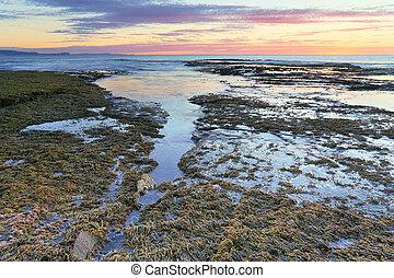 australia, desbordamiento, arrecife, largo, nsw