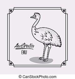 australia emu in frame and monochrome silhouette vector...
