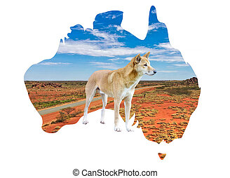 Australia map with outback country view and dingo
