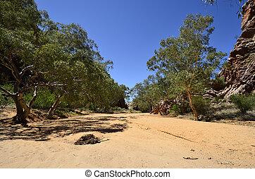 australia, nord gegend , mcdonnell, bereich
