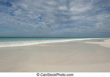 australia, spiaggia, paradiso