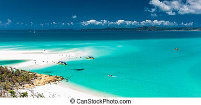 australia, whitehaven, queensland, zdumiewający, whitsunday, plaża, wyspy