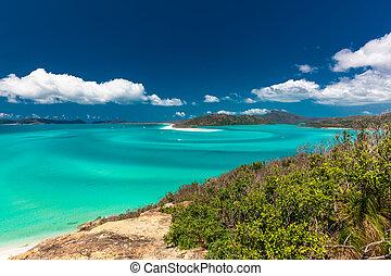 australia, whitehaven, zdumiewający, whitsunday, plaża, wyspy