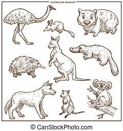 Australian animals and birds vector sketch - Australian...