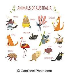 Australian animals vector cartoon design - Cartoon...