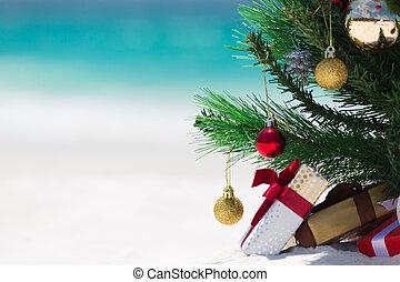 Australian Beach Christmas - Christmas time spent at the ...