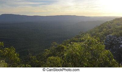Australian Bush - Landscape scenic of the Australia bush in...