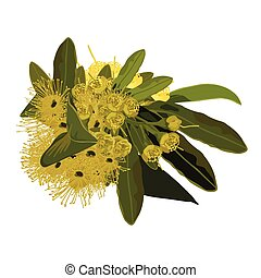 Australian Golden Penda Vector