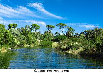 green park landscape - Australian green park landscape with ...