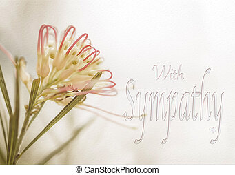 Sympathy card with Australian Grevillea flower in soft pastel colors and text for sorrow, funeral, remembrance, greeting, departure, loss, or sad message