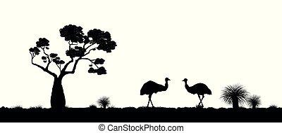Australian landscape. Black silhouette of emu