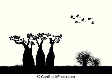 Australian landscape. Black silhouette of koala