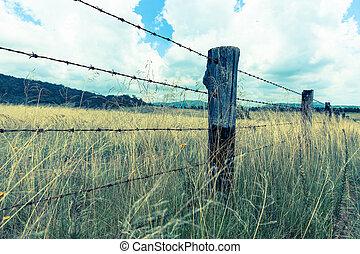 Australian Landscape cross process vintage image effect