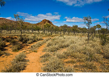 australian outback - bush and road on the outback, northern...