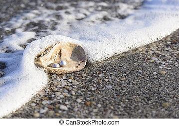 Australian pearls