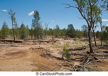 Australian plain with flood soil damage