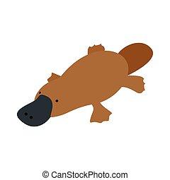 Australian platypus icon, isometric 3d style - Australian ...