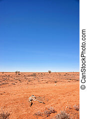 australian red desert outback is dry and barren